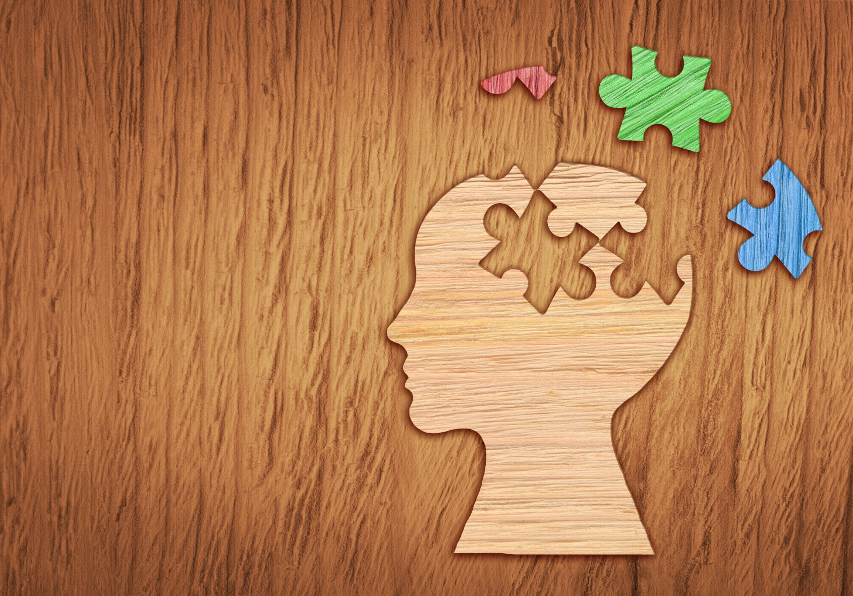 Un puzzle du cerveau humain