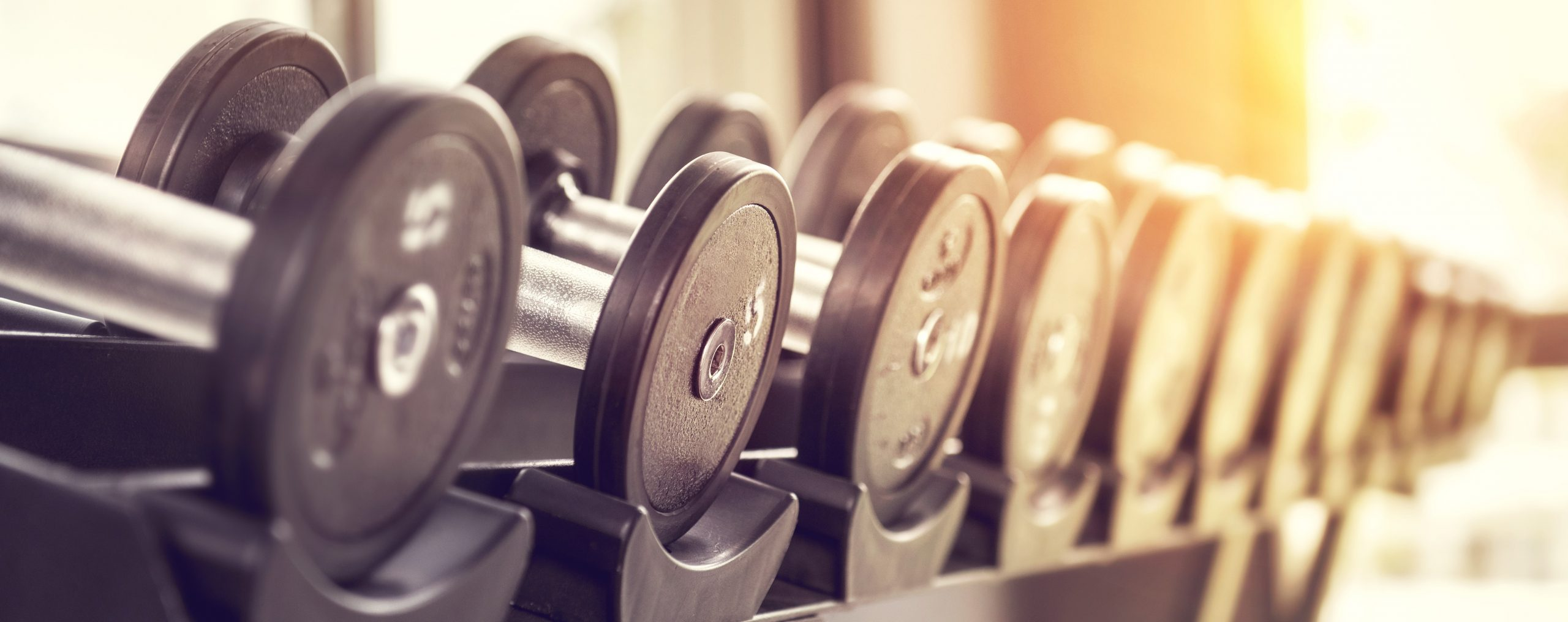 Rows of dumbbells in the gym with sunlight in morning.
