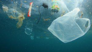 garbage in ocean. pollution