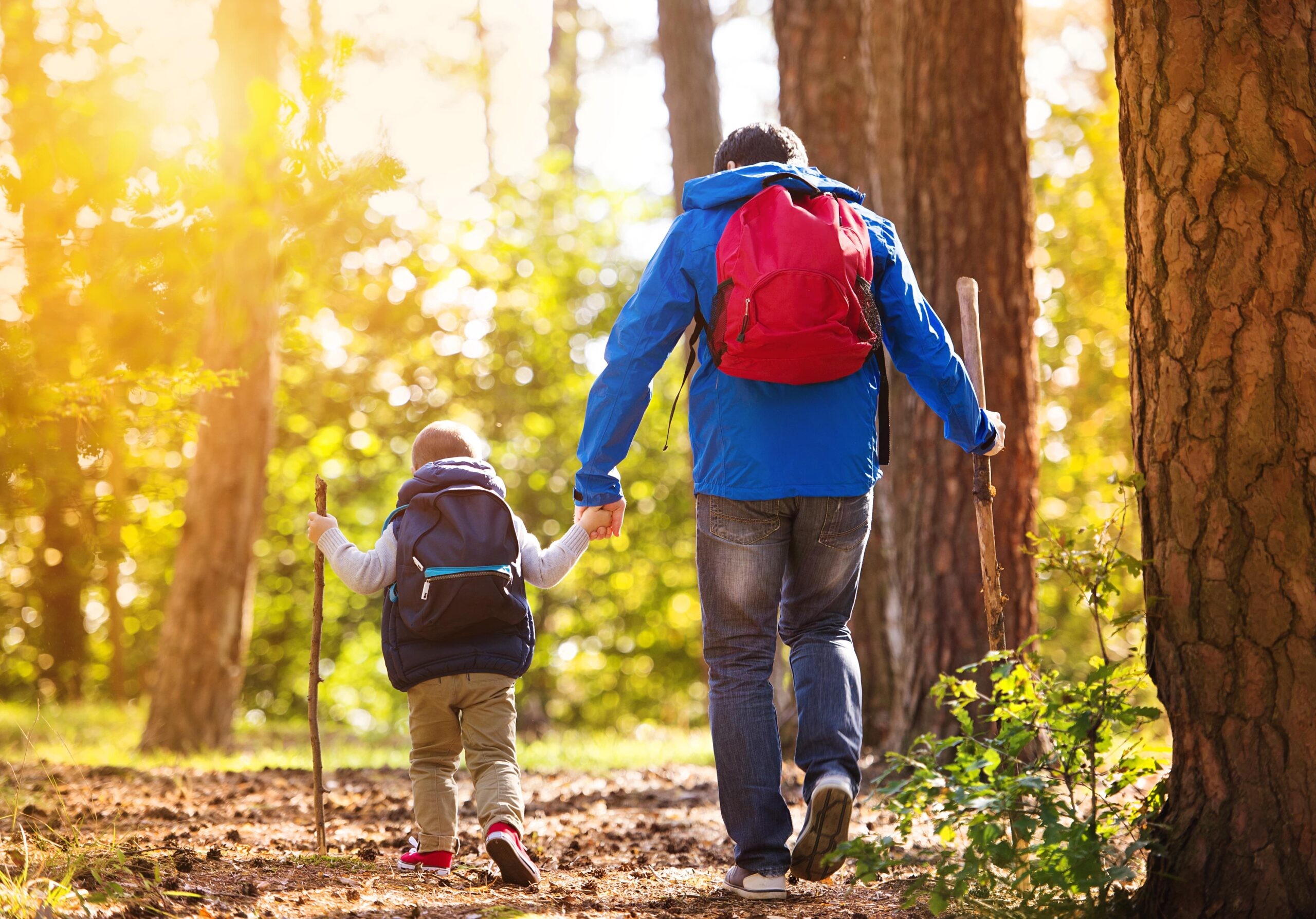 Young child and father hiking in the forest.