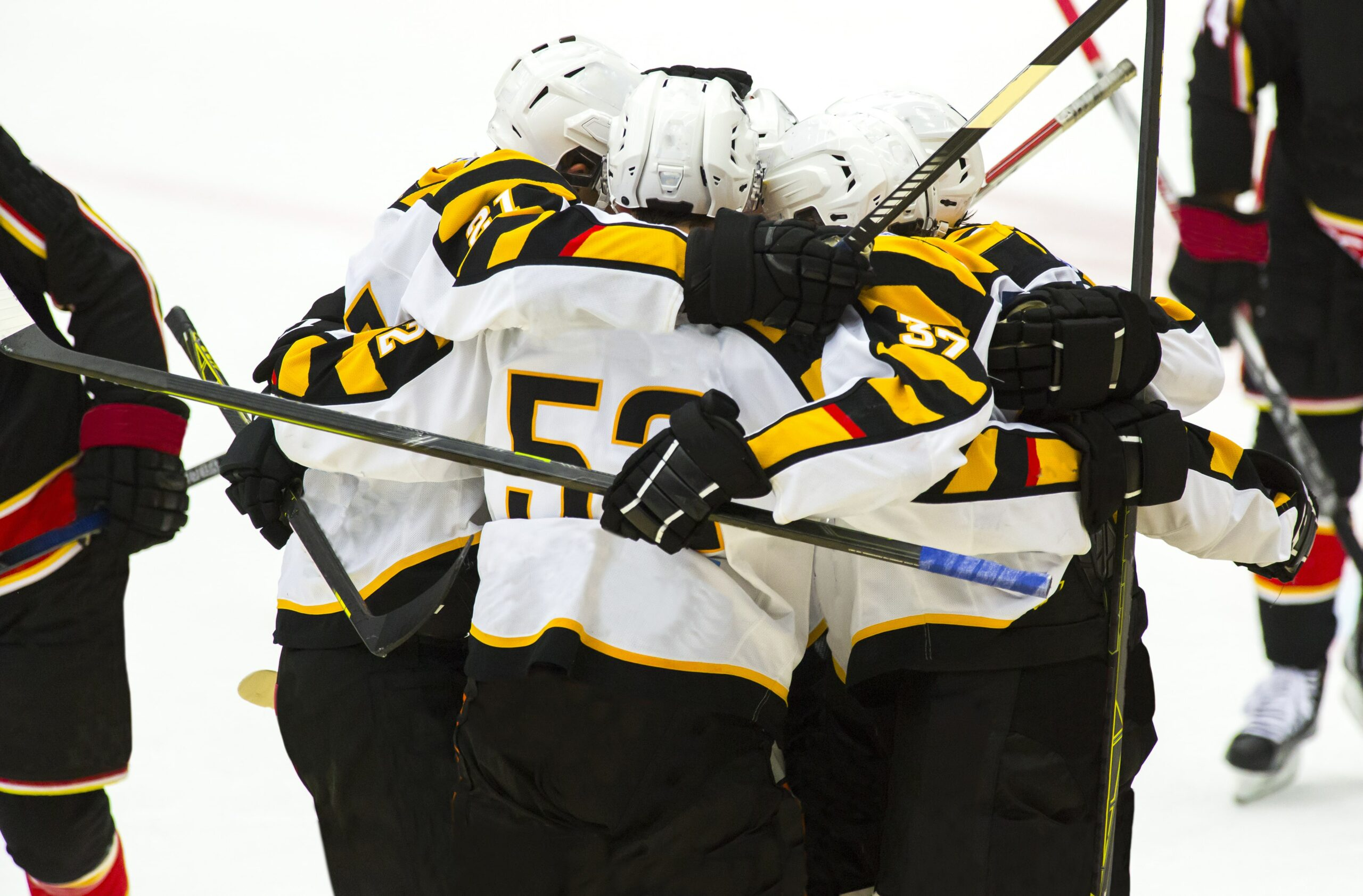 Ice hockey team celebrating