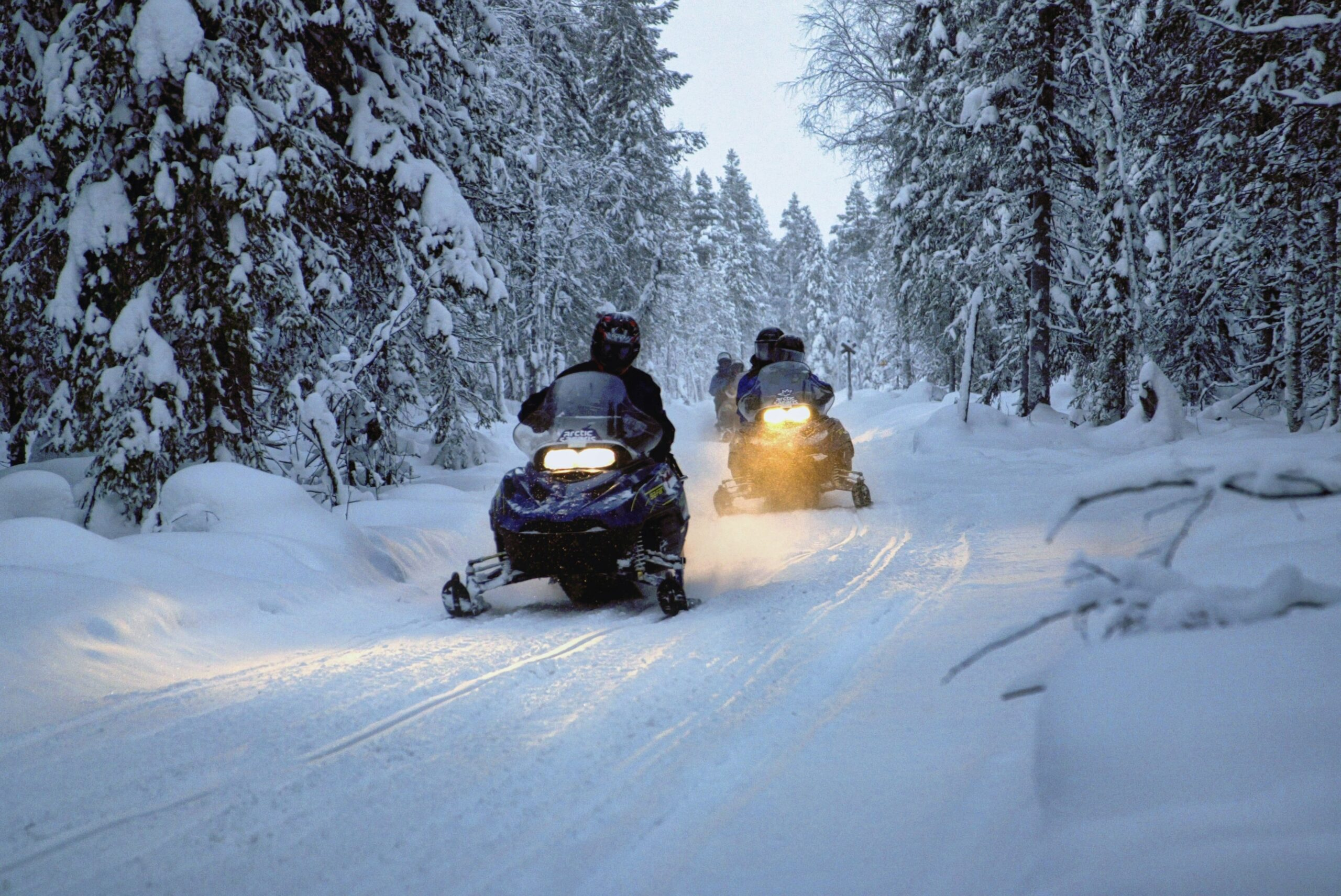 Group of people snowmobiling in forest, winter.