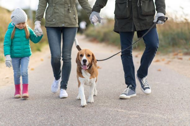 Family outdoors walking dog